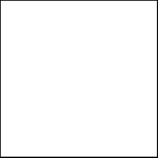 tela para encuadernar blanca