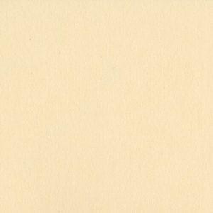 papel 12x12 pigment