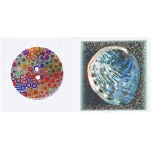 Botón-concha-círculos