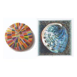Botón-concha-espiral