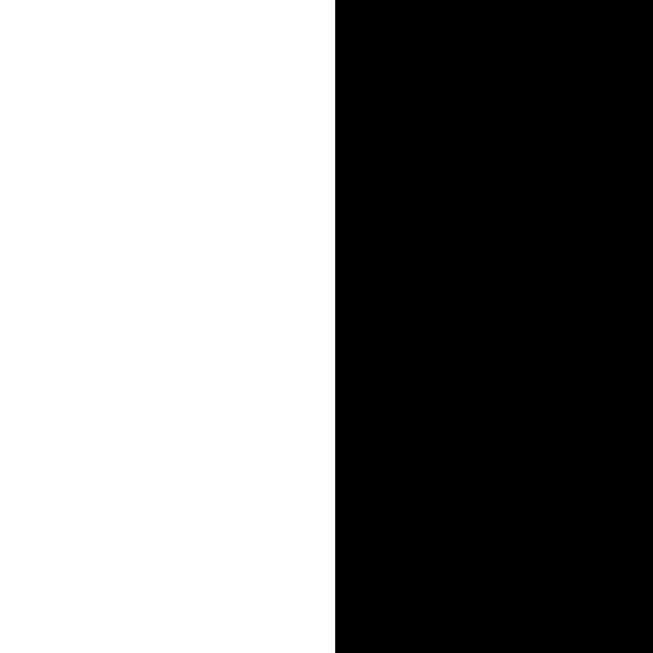 The Basics blanco y negro