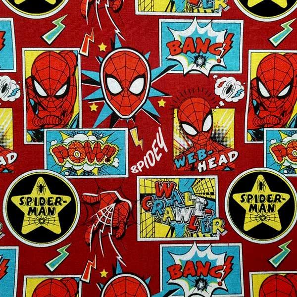 Spiderman-detalle