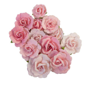 flores sweet sunshine