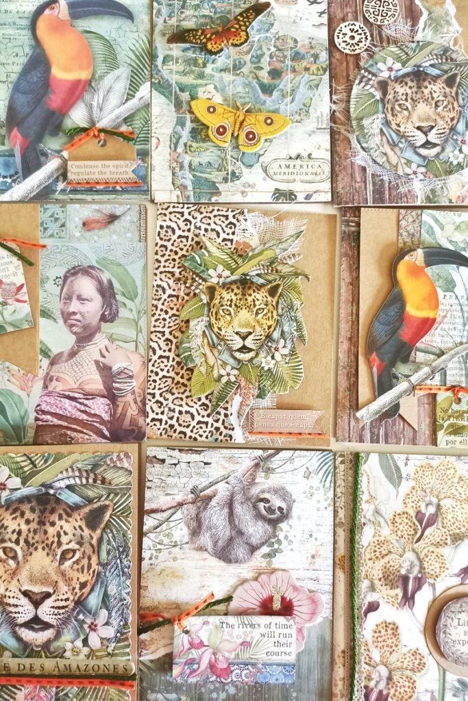 tarjetas creativas amazonas