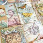 tarjetas creativas mariposa