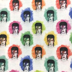 Tela Freddie Mercury